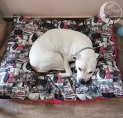 Kreveti za velike pse