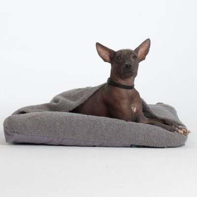 Cave Dog Bed Pillow