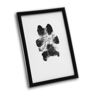 Clean Touch Paw Ink Pad