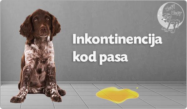 inkontinencija kod pasa