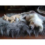 Krevet za macke i pse