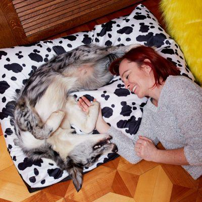 dog-love