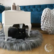 Luxury cat furniture