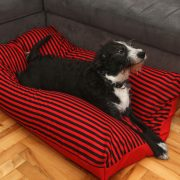 dog beds removable washable covers